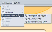 "Screenshot der ""Site-Navigation"" moderner Browser"